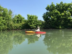 Paddling Along Freels Bend