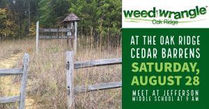 Summer Cedar Barren Cleanup/Weed Wrangle® @ Jefferson Middle School