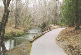"""Guided Hike: """"Identifying Trees in Winter"""", Obed River Park, Saturday, January 26"""