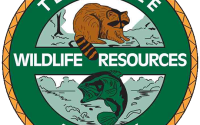 A License to Fund Conservation
